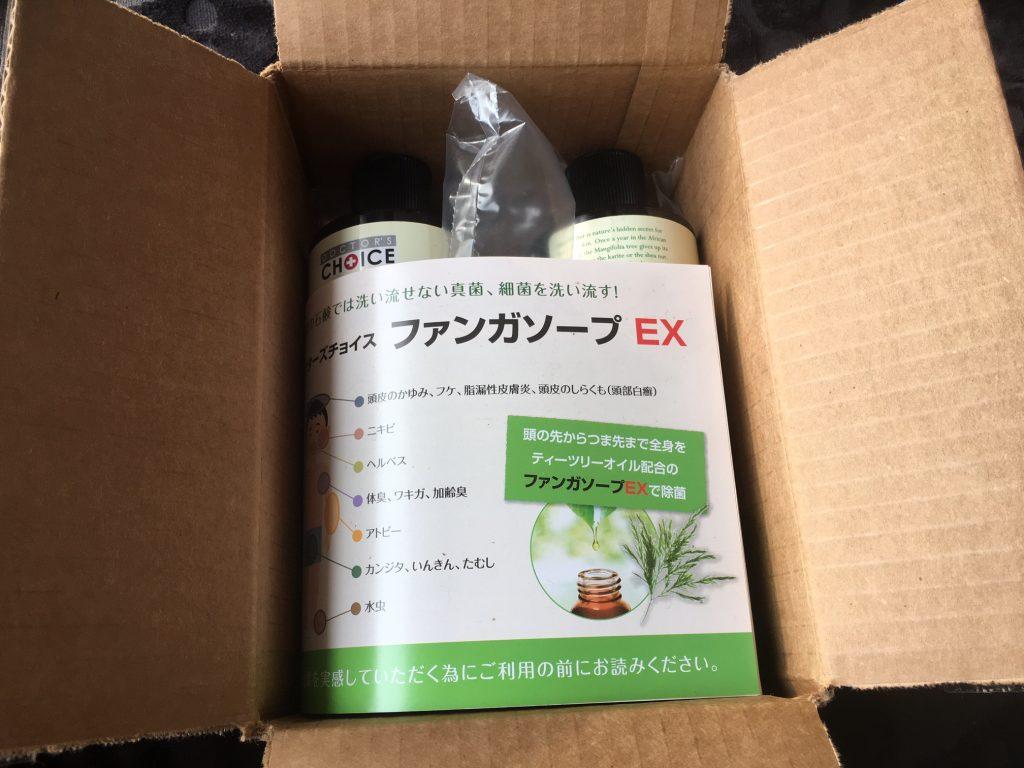 カンジダ対策におすすめの「ファンガソープEX(本物)」を買って試してみた!口コミ、レビュー! – 天然成分ティーツリーオイルで、カンジダ菌(真菌)や細菌を殺菌!